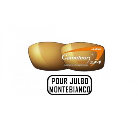 Lunettes de soleil JULBO Verres Cameleon pour Julbo Trek